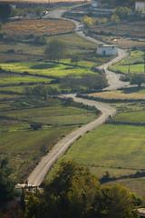 Plateau d'Imbros (jmmuggianu) Tags: field plateau champs arbres ombres crte
