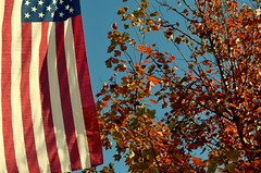 American Fall (DancingTerrapin) Tags: blue autumn red white tree fall home leaves america ga us americanflag bluesky flags milton starsandstripes crabapple americanhome