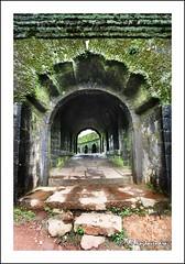 Manjarabad Fort (sp raghav) Tags: canon arch fort algae canon500d tippusultan efs1022mmf3545 manjarabadfort