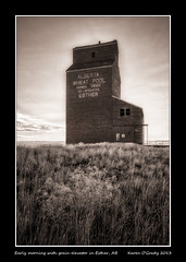 Early morning with grain elevator in Esther, Alberta (kgogrady) Tags: wood morning summer blackandwhite bw canada west building field grass clouds landscape early blackwhite wooden nikon peeling paint solitude afternoon exterior g country farming elevator grain noone sunny ab nopeople s canadian alberta tables western infrared esther weathered prairie nikkor grainelevator afs dx 2013 d80 canadianprairies nikkor1870mmf3545gifed estheralberta picturesofcanada photosofcanada calgarypubliclibraryphotographyclub picturesofalberta photosofalberta estherab