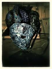 ARYTHMIE d'Alban Curnillon
