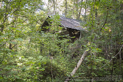 4 wheeling in the hills and woods of Tennessee (sduncan76) Tags: art composition canon creativity photography eos photo al birmingham jasper tn image artistic knoxville tennessee clinton creative picture pic artsy photograph duncan canoneos sherri eosrebel birminghamal kilgore canoncamera clintontn 2013 knoxvilletennessee t4i jasperal canont4i sherrimduncan sherriduncan facebookcomcreativebrillianceart creativebrilliance creativebrilliancebysherrimduncan creativebrillianceartbysherrimduncan creativebrillianceart creativebrillianceartgmailcom sherrikilgoreduncan creativebrillianceartcom wwwcreativebrillianceartcom
