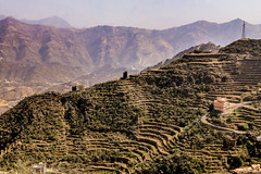 Jizan Fayfa Mountain-4875 (Androtopia) Tags: saudiarabia jizan