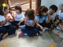 Conhecendo as frutas (Colgio Razes) Tags: frutas infantil das ensino colgio mogi ipad cruzes educao alimentao fundamental razes saudvel bilngue