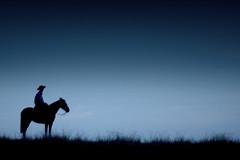 El matrero... (Eduardo Amorim) Tags: brazil horses horse southamerica field brasil night criollo caballo cheval caballos noche grande silhouettes campo noite cavalos pferde nuit litoral cavalli cavallo cavalo gauchos pferd riograndedosul siluetas pampa champ hest hevonen campanha brsil chevaux gaucho  amricadosul hst gacho  amriquedusud  gachos  sudamrica amricadelsur  crioulo criollos  america costadoce americadelsud  crioulos americameridionale cavalos crioulos auffangen eduardoamorim amrica caballos cavalo criollo  caballo crioulo criollos