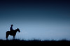 "El matrero... (Eduardo Amorim) Tags: brazil horses horse southamerica field brasil night criollo caballo cheval caballos noche grande silhouettes campo noite cavalos pferde nuit litoral cavalli cavallo cavalo gauchos pferd riograndedosul siluetas pampa champ hest hevonen campanha brésil chevaux gaucho 馬 américadosul häst gaúcho 말 amériquedusud лошадь gaúchos 马 sudamérica américadelsur סוס crioulo criollos حصان america"" costadoce americadelsud ม้า crioulos americameridionale ""cavalos crioulos"" auffangen eduardoamorim ""américa ""caballos ""cavalo criollo"" ঘোড়া ""caballo crioulo"" criollos"""