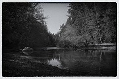 La Couloir, Sooke River, Vancouver Island, BC, Canada (jpcastonguay) Tags: trees light shadow blackandwhite bw white canada black tree film nature contrast river dark flow outdoors blackwhite nikon rocks stream noir shadows bc gloomy dynamic noiretblanc outdoor dusk britishcolumbia riviere grain gritty nb vancouverisland lumiere blacks gloom grainy vignetting westcoast vignette blanc hdr highdynamicrange couloir sooke filmnoir pixelated contrasty darkened edgy westcanada efex sookeriver d5200 nikond5200 streamphotography