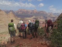 REI GC 2014 spring trip 2 - 87 (toddwiggins) Tags: spring grandcanyon olympus southrim 2014 rei2