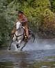 Mel IMG_6338 (blackhawk32) Tags: autumn horses horse cowboy shell wranglers wyoming rivercrossing wy wrangler shellwyoming hideoutlodge