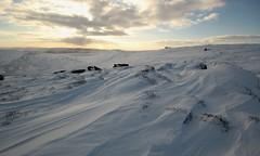 Kinder Scout Winter Whites (Derbyshire Harrier) Tags: winter snow dusk derbyshire peakdistrict snowdrift kinder crepuscularrays darkpeak edale moorland gritstone kinderscout 2015 peakpark swinesback
