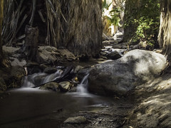 Stream Serenity 2 (AR_the old guy) Tags: california trees sun water rocks stream long exposure raw andreas canyon palm springs shade grasses serene toned shrubs ndfilters epicshots