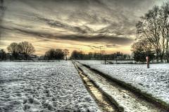 Cold gold (sidibousaid60) Tags: uk winter sunset snow ice buxton derbyshire fairfieldcommon