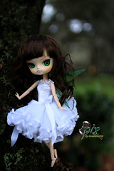 Will You Be My Fairy Tail Hero (dreamdust2022) Tags: cute girl pix doll little young adorable dal pixie charming magical playful giggles tricky bratty