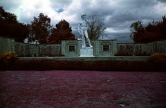Statue of David Replica (analoguefilm) Tags: film cemetery analog forest 35mm minolta kodak lawn infrared colorinfrared eir statueofdavid experimentalphotography aerochrome minoltasrtmc