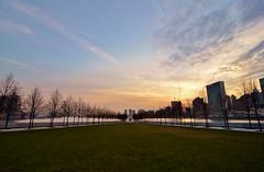Roosevelt Island, 12.12.15 (gigi_nyc) Tags: nyc newyorkcity sunset eastriver rooseveltisland fourfreedomspark
