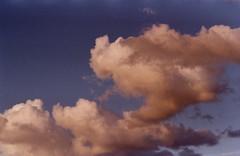 (Zlata Skorobogatova) Tags: sunset cloud film analog 35mm fuji pentax takumar atmosphere m42 fuji200 fujicolor filmphoto