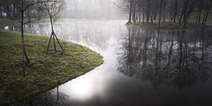 Misty morning at the lake (ForeignBodies) Tags: park morning mist lake tree fog forest dawn