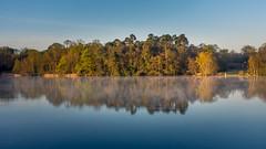 Tranquility (kleptografy) Tags: morning trees england sky mist lake reflection water forest sunrise tranquility windsor windsorgreatpark
