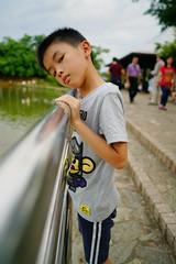 2016-05-14 18.10.36 (pang yu liu) Tags: park ecology pond 05 may daily kai eco pate yi    2016