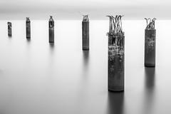Columns in the water (hzeta) Tags: bw white black blanco water agua long exposure y negro columns silk bn sequence pillars effect seda wrecked exposicion larga efecto columnas pilares secuencia abandonadas