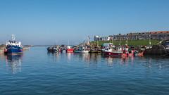 Seahouses Harbour (Maria-H) Tags: uk sea england boats unitedkingdom harbour panasonic northumberland gb seahouses 1235 gh4 dmcgh4