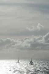 Sailing off Maui (robinhess) Tags: hawaii unitedstates lahaina