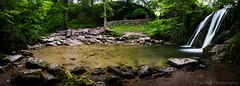 Janets Foss (jasonmgabriel) Tags: panorama motion tree water wall waterfall scenery rocks stream long exposure yorkshire blurred foss janets dales malham syone