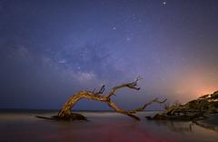 Jekyll Blue Hour (Anish Patel Photo) Tags: beach driftwood milkyway stars ocean georgia jekyll island night