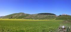 Piana di Castelluccio, panoramica (alessiodl) Tags: panoramica norcia castelluccio