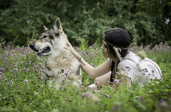 Anais & Dante (Xavier R. photography) Tags: dog chien color beauty animal wonderful amazing nikon wolf loup d200 complicit amerindien indienne amerindienne