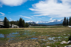 Tuolumne Meadows (christopherjwaddell) Tags: landscape yosemite fujifilm tuolumnemeadows xt10