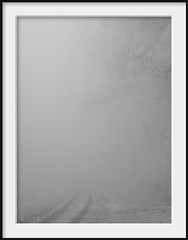 vanish (Andrew C Wallace) Tags: trees winter blackandwhite bw cloud white mist ir track australia victoria infrared vanish yarraranges domdomsaddle olympusomdem5