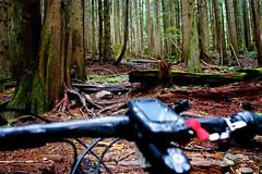 RidetheNorthShore (revolutionsports.eu) Tags: race northshore biking squamish mountainbikes framebuilder testofmetal allmountain carbonbikes konstructive