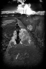 The Journey Home (miniwaites) Tags: trees light sunset england cloud clouds reeds walking puddle toddler child unitedkingdom path walk sony lensflare flare gb nik lightrays nex iken a6000 silverefex niksuite