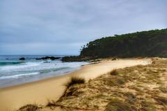 Tussocks (jack eastlake) Tags: nude bay coast south valley nsw nudist far bermagui bega armands naturists