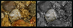The Pool (Padski1945) Tags: seaside stones southoffrance bandol rockpools scenesfromoverseas
