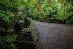 Bridge (avaird44) Tags: bridge scotland moss aberdeenshire mintlaw adenpark