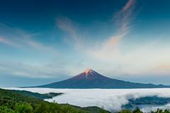 Fuji and Sea of clouds (shinichiro*@OSAKA) Tags: 20160518ds32090 2016 crazyshin nikond4s afsnikkor2470mmf28ged april may fuji  yamanashi japan candidate