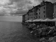 Harbour of Rovinj, Croatia (Daniel C. Brunner) Tags: bnw blackandwhite bw blackwhite noiretblanc harbour rovinj croatia 2016 lumixg mft mono monochrom holiday