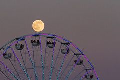 Cheap Ride to the Moon [Explored on 6/21/16] (Above and Below the Waterline) Tags: moon sandiego fair fullmoon solstice ferriswheel strawberrymoon