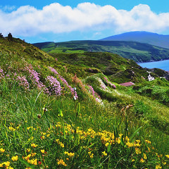 160531 Niarbyl Bay (Fob) Tags: may 2016 travel trip europe uk isleofman niarbyl iom
