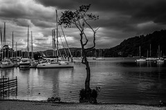 Lake Windermere. (ian.emerson36) Tags: mountains tree clouds canon landscape boats blackwhite alone sailing lakes sails hills cumbria yachts windermere