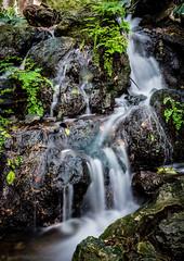 Flowing silk (Javier Palacios Prieto) Tags: naturaleza green nature water rock ro river waterfall agua eau wasser wasserfall natur bach fluss arroyo cascada exposicin langzeitsbelichtung