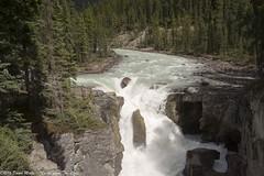 Sunwapta Falls (David Minty) Tags: waterfall landform