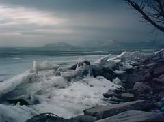 (bavan.prashant) Tags: winter 120 mamiya film mediumformat 645 kodak m 100 2012 lenses ektar sekor