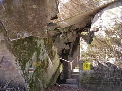 Wilczy Szaniec (magro_kr) Tags: las museum forest spring mazury poland polska bunker muzeum wiosna bunkier gierłoż gierloz