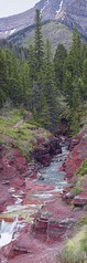 Spring in Red Rock Canyon 16x48 (sloppyshooter) Tags: redrockcanyon red mountains water rock spring layers flowing watertonlakesnationalpark southernalberta