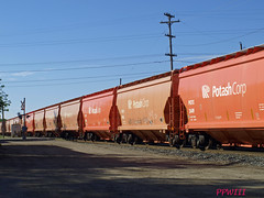 Potash Hoppers (PPWIII) Tags: railroad nelson trains grandrapids seymour potash burton csx q335