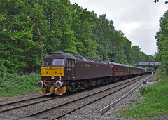 47760 brings up the rear as it passes through Sutton Park (GVG Imaging) Tags: suttonpark streetly footcrossing compasstours thewilliamshakespeare class47diesels mainlinediesel