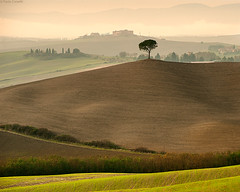 Layers & Lines #13 (Corsaro078) Tags: tree lines landscape hills tuscany layers toscana albero paesaggio colline